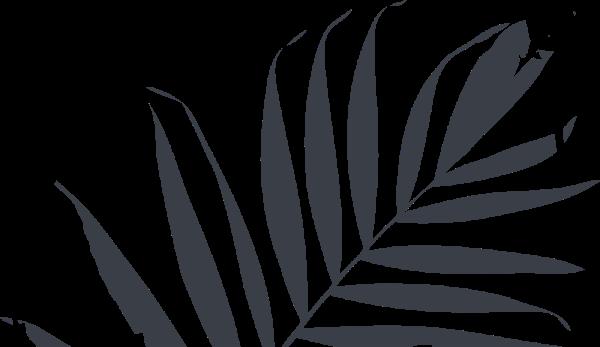 leaf_dark_3@3x